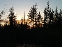 Милое озеро Стоковые Изображения RF