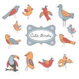 Милое собрание смешных птиц Стоковое фото RF