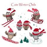Милое собрание сычей зимы также вектор иллюстрации притяжки corel Стоковые Изображения