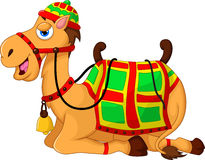 Милое усаживание шаржа верблюда Стоковые Изображения
