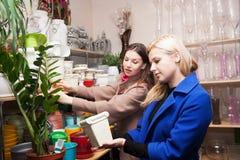 Милые девушки в цветочном магазине Стоковые Изображения