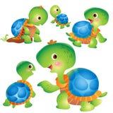 Милые действия шаржа черепахи Стоковые Фотографии RF