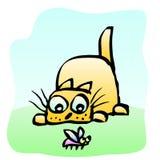 Милые желтые добычи кота на жуке также вектор иллюстрации притяжки corel бесплатная иллюстрация
