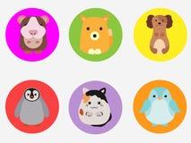 Милые животные Стоковые Фотографии RF