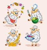 Милые кашевары овец Стоковые Изображения RF