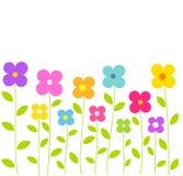 Милые красочные цветки Стоковое Изображение