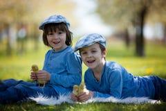 Милые маленькие дети, братья мальчика, играя с sprin утят Стоковые Изображения