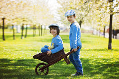 Милые маленькие дети, братья мальчика, играя с sprin утят Стоковые Фотографии RF