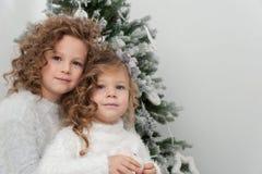 Милые милые усмехаясь девушки приближают к рождественской елке Стоковая Фотография