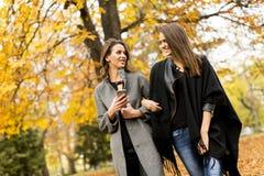 Милые молодые женщины в парке осени Стоковое Изображение RF