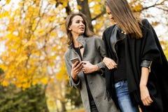 Милые молодые женщины в парке осени Стоковое Фото