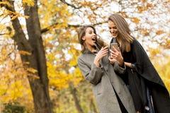 Милые молодые женщины в парке осени Стоковое Изображение