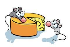 Милые мыши и сыр Стоковое Изображение