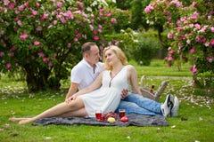 Милые пары выпивая красное вино на пикнике усмехаясь на одине другого на солнечный день Стоковое Фото