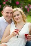 Милые пары выпивая красное вино на пикнике усмехаясь на одине другого на солнечный день Стоковые Изображения