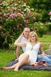 Милые пары выпивая красное вино на пикнике усмехаясь на одине другого на солнечный день Стоковая Фотография