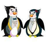 Милые пингвины на белой предпосылке Стоковые Изображения