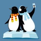 Милые пингвины на ледяном поле бесплатная иллюстрация