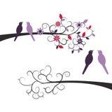 Милые птицы пар на ветвях Стоковые Изображения RF