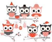 Милые птицы сыча зимы Иллюстрация штока