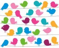 Милые силуэты птицы стиля шаржа в формате вектора Стоковое Изображение RF