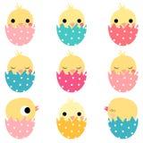 Милые цыплята пасхи в покрашенных яичках Иллюстрация вектора
