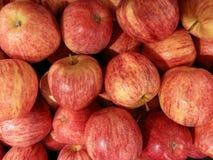 Милые яблоки Стоковое фото RF