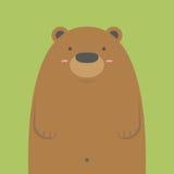 Милый большой бурый медведь Стоковые Изображения