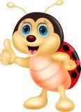 Милый большой палец руки шаржа ladybug вверх Стоковые Изображения