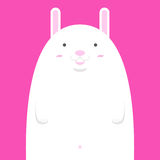 Милый большой тучный белый кролик Стоковые Фото