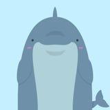 Милый большой тучный дельфин Стоковые Фотографии RF