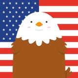 Милый большой тучный орел Стоковые Фотографии RF