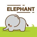 милый вектор слона Иллюстрация вектора