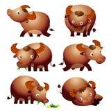 Милый вектор шаржа буйвола много действий Стоковые Изображения RF