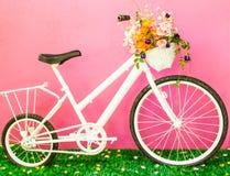 Милый велосипед Стоковое фото RF