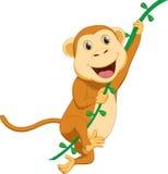 Милый висеть шаржа обезьяны Стоковое Изображение RF