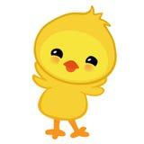 Милый желтый счастливый цыпленок пасхи Стоковое Изображение