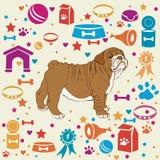 Милый комплект собаки Стоковое фото RF