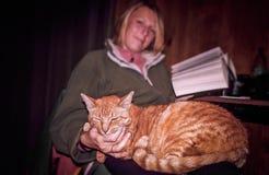 Милый кот отдыхая на коленях женщины Стоковая Фотография RF