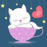 Милый кот спать в чашке Стоковая Фотография RF