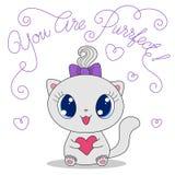 Милый кот с сердцем Стоковое Фото