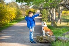 Милый красивый стильный мальчик наслаждаясь красочным парком осени с его собакой лучшего друга красной и белой английской быка De стоковая фотография rf