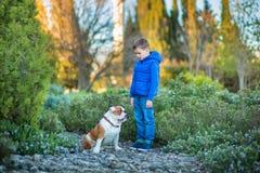 Милый красивый стильный мальчик наслаждаясь красочным парком осени с его собакой лучшего друга красной и белой английской быка De стоковые изображения rf