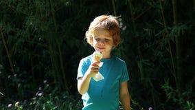 Милый красный мальчик волос есть мороженое в парке видеоматериал