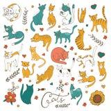 Милый красочный комплект котов нарисованных рукой с цветками и листьями хворостин Стоковая Фотография RF