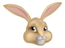 милый кролик зайчика шаржа Стоковые Изображения