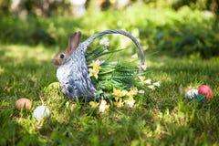 милый кролик травы Стоковые Изображения