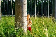 Милый маленький портрет девушки preschooler в лесе захода солнца Стоковое фото RF
