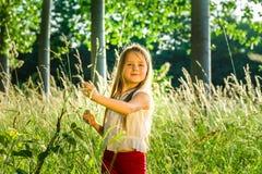 Милый маленький портрет девушки preschooler в лесе захода солнца Стоковое Фото