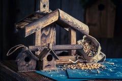 Милый малый дом и план строительства птицы Стоковое фото RF